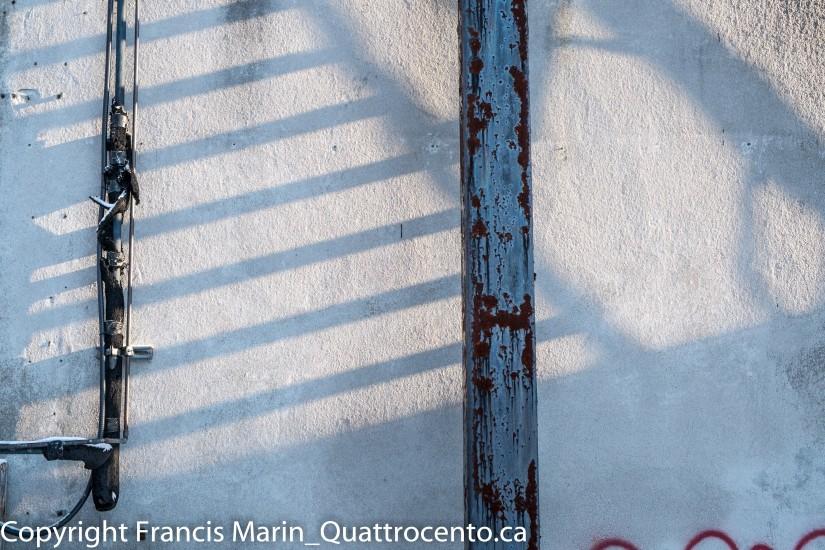 EXPÉRIMENTART op. 10 Le mur d'Exofruit-6101