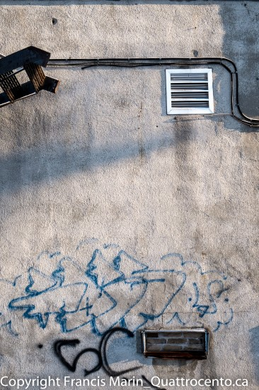 EXPÉRIMENTART op. 10 Le mur d'Exofruit-6112